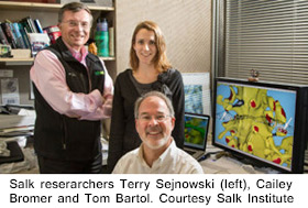 Salk Researchers