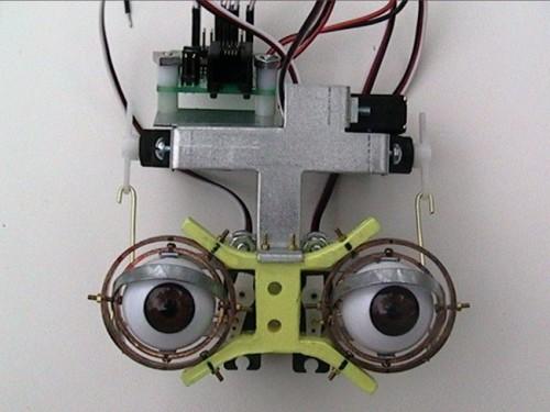 Diy animatronics face do it your self